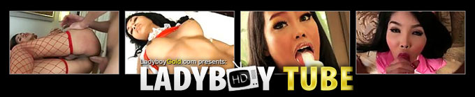 Website review: Ladyboy Tube